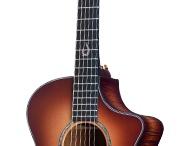 Breedlove Guitars / by Matt Gibson