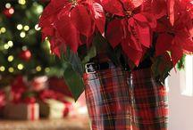 Nikolaus - Blumen statt Ruten in den Stiefel