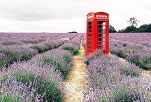 UK inspiration