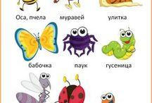 рисунок насекомые