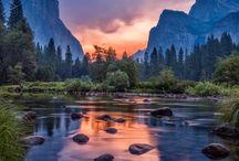 nature photography / nature