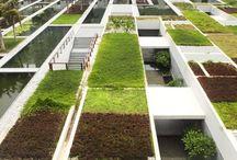 Landscape Architecture / by zusie