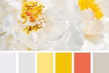 Color palettes & theory