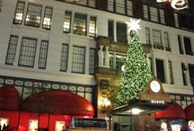 Christmas in NYC / by Jill Triptow