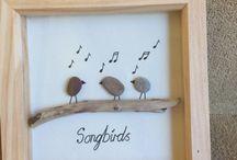 Songbirds PCP