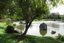 jardín japones  / la serena, chile