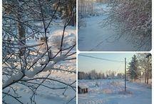 vinter ❄