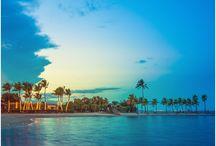 Las mejores playas del mundo / Los destinos que se encuentran cerca de la playa tienen ese encanto que sólo la mezcla de arena, sol y mar pueden darle al viajero amante del trópico. ¡Descubre las playas más paradisíacas del mundo!
