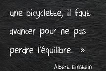 Citations Françaises pour  projet life