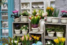 nukkekoti kukkakauppa