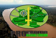 Programa Pró-Amazônia