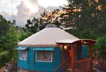 Yurt yoda