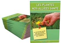 Les Plantes Nos Alliées Santé / Découvrez « LES PLANTES NOS ALLIÉES SANTÉ » dans cet ebook vous retrouverez toutes les plantes utilisées pour Traiter les Maladies Depuis des Centaines d'Années…  la suite sur http://topproduits.com/wp/infoproduits/bien-etre/les-plantes-nos-alliees-sante/