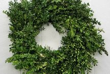Esprit Greens, Fillers and Wreaths for the Holidays / This board is dedicated to your Holiday decorating.  Whether it is greens, berries, branches or wreaths start your search here.