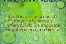 Prácticas Verdes / Consultoría, capacitación para la implantación de Prácticas Verdes que consiste en eficientar la gestión de los recursos aumentar la productividad minimizando los impactos negativos al ambiente.