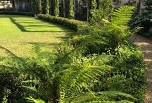 Earth Studio Gardens / These are images of gardens that I have designed and installed