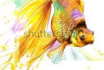 Рисунки - Рыбы, морские животные