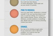 the color of your pee