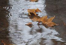 Rain, Roads and Friends