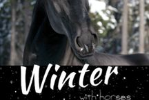 White Cloud Station / BOOKS FOR HORSE LOVERS