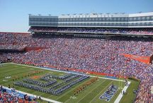 Gator Nation to some, Home to me  / by Chelsea Smith