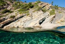 L'île de Port-Cros (parc national)