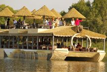 Sunset Cruise on the Mighty Zambezi River! / Lion King of the Victoria Falls.
