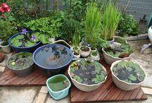 ideas para mi pequeño jardin :)