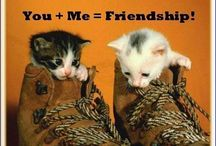 words of friendship