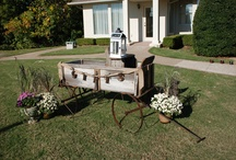 Designs by Gayla's Weddings and Events / #wedding / by Holli Banes