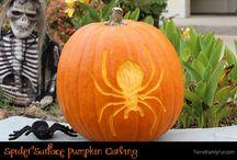 Pumpkins / by Kris Johnson