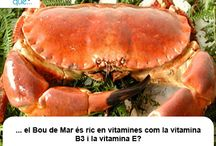 Bou de mar / Buey de mar / Aquí trobaràs curiositats sobre el bou de mar / Aquí encontrarás curiosidades sobre el buey de mar