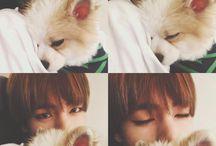 Tae & dog