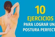 Espalda: ejercicios