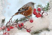 Cosas bonitas y de navidad
