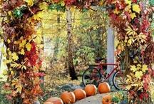 Autumn / by Gigi