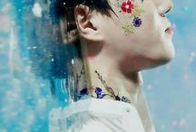 kim junmyeon