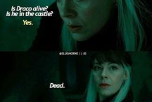 Harry potter Mothers love