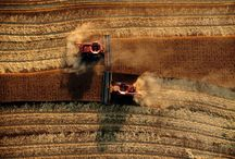 Harvest in Sherman County / Cutting crops in Sherman County, Kansas