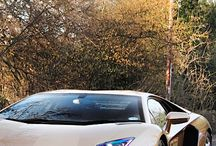 Amazing sport cars !