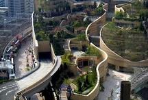 eco architektura