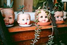 Dolls Heads