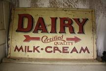 Do Dairy Daily / by Leslie Schoenfelder