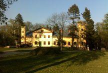Kursko - Pałac / Pałac w miejscowości Kursko został wzniesiony dla rodziny von Kalckreuth w końcu XVIII w. Byli oni jego właścicielami do 1945 r. Po wojnie pałac został przeznaczony na ośrodek kolonijny, później przeszedł w zarząd poznańskiej AWF, a w latach 90-tych został sprzedany.
