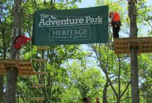 Closed To General Admission / Just a reminder that The Adventure Park at Heritage Museums & Gardens will be closed for general admission on Thursday & Friday, June 11 & 12 due to park rentals.  Thanks!  We will reopen for general admission on Saturday, June 13 at 9:00am!