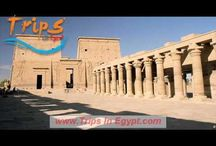 Nile Cruises Tours