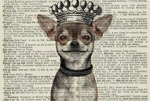 Chihuahua decoupage papier