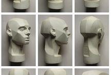 anatomy-head
