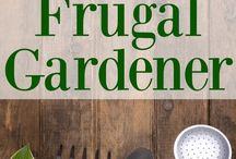 home: gardening 101