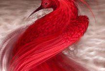 Araba Fenice - il nostro Paradiso Virtuale- Phoenix rises from its own ashes / Il nostro Paradiso Virtuale è dedicato all'#ARABA #FENICE, un uccello mitologico divenuto famoso per rinascere ogni  anni dalle proprie ceneri dopo la morte. Sentendo arrivare la morte, accatastava piante profumate che emanavano un buon profumo, intrecciava  un nido a forma di uovo, vi si adagiava  lasciando che i raggi del sole l'incendiassero mentre cantava una canzone meravigliosa. Dalla cenere emergeva un uovo da cui rinasceva.